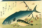 wikipedia - fugu